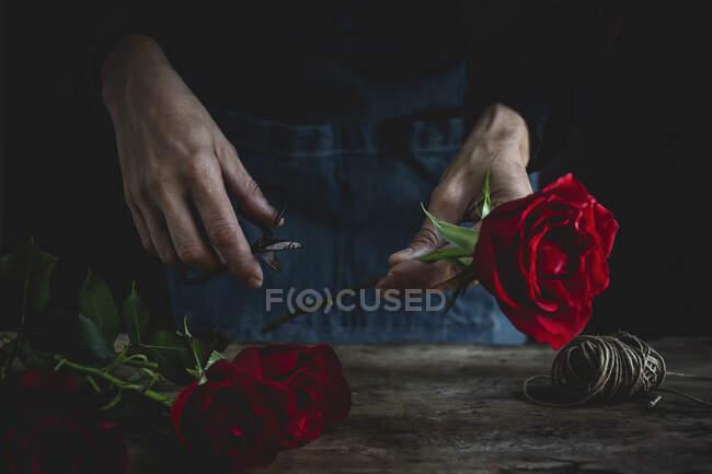 Неузнаваемая женщина делает букет из красных роз на День Святого Валентина. Любовь — стоковое фото