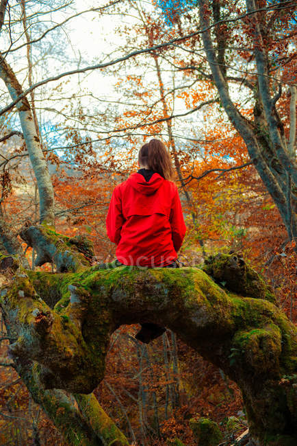 Back view of young woman in red jacket sitting on mossy trunk of old tree in majestic autumn forest — Stock Photo