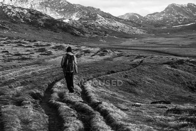 Back view of person with backpack walking on dry grass of wonderful valley towards spectacular mountain ridge — Stock Photo