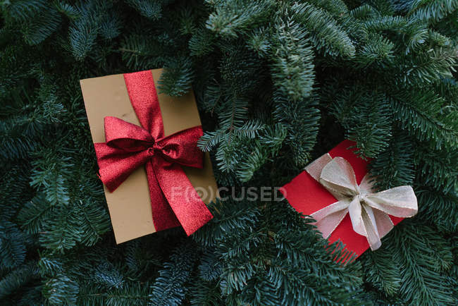 З верхнього кадру двох різдвяних подарунків, що лежать на зелених гілочках хвойного дерева. — стокове фото