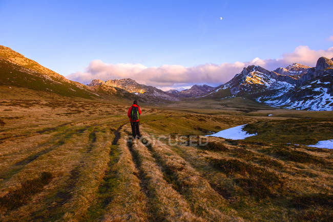 Back view of person with backpack walking on dry grass of wonderful valley towards spectacular mountain ridge — стокове фото