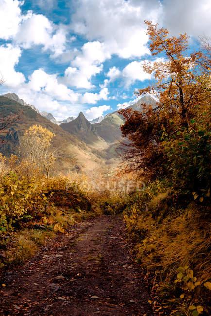 Узкая тропинка, идущая рядом с осенними деревьями к чудесному горному хребту в пасмурную погоду в красивой природе — стоковое фото