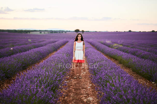 Young woman standing between rows of violet lavender field — Stock Photo