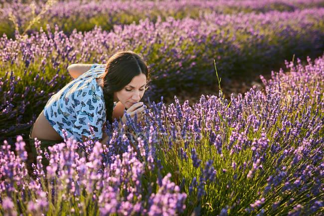 Atractiva señorita oliendo hermosas flores púrpuras en el campo de lavanda - foto de stock