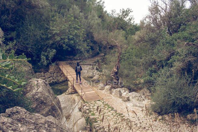 Vue arrière de la femme avec sac à dos traversant un petit pont en bois tout en marchant dans un magnifique parc calme à Soller, Espagne — Photo de stock