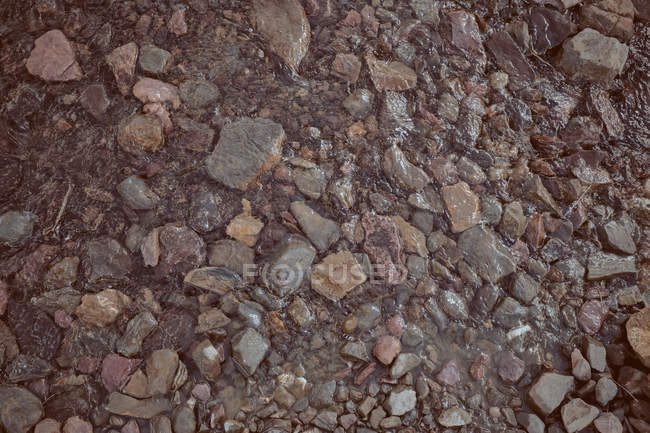 Background of small wet rough stones — Stock Photo