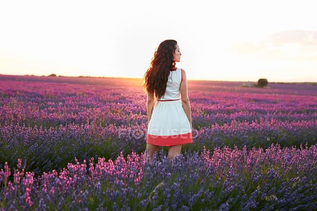 Mujer de pie entre el gran campo de lavanda violeta al atardecer - foto de stock