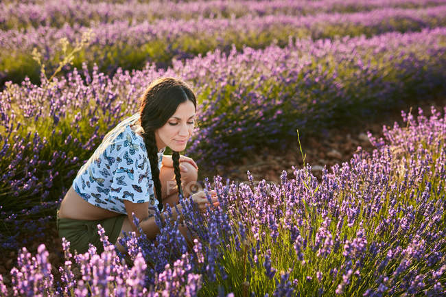 Attractive young lady smelling beautiful purple flowers on lavender field — Stock Photo