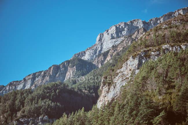 Синє небо над величний rocky гора з смереки — стокове фото