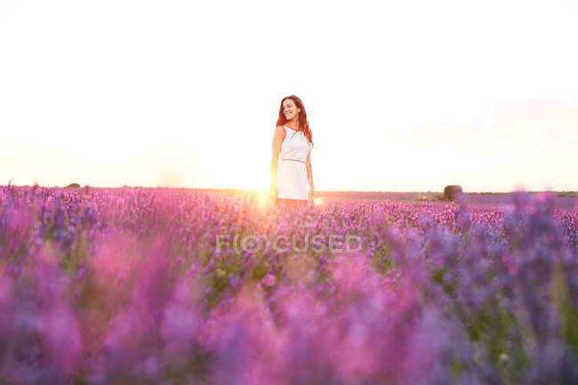 Smiling young woman between violet lavender field in backlit — Stock Photo