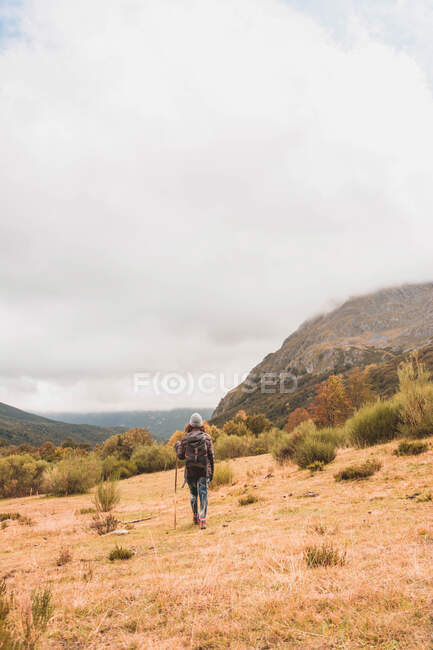 Back view of lady in hat and ski jacket with knapsack and walking stick walking on meadow near mountain in clouds in Isoba, Castile and Leon, Spain — Stock Photo