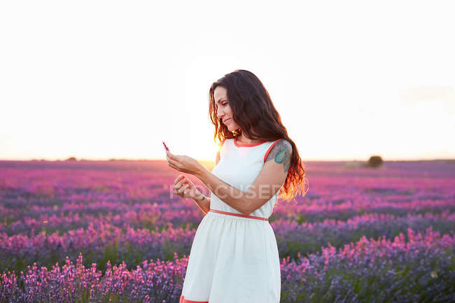 Young woman holding flowers between violet lavender field — Stock Photo