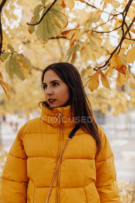 Portrait of young lady in stylish warm clothes standing near tree in autumn park — Stock Photo