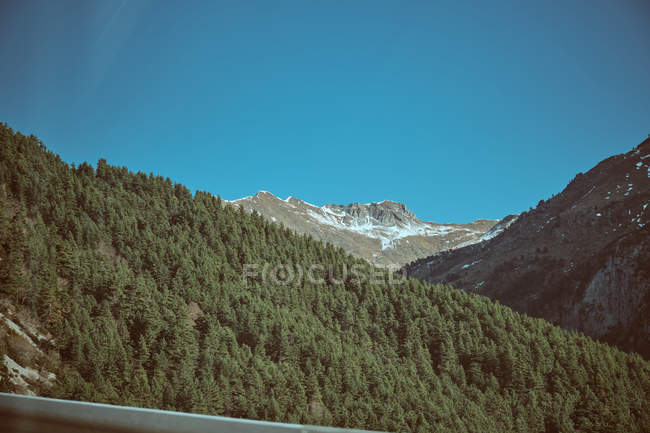 Blue sky over majestic mountains with spruces — Stock Photo