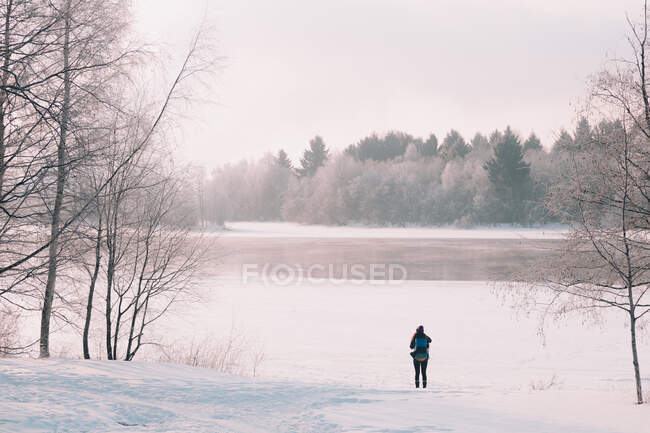Back view of female with backpack standing on white snow near frozen river in majestic Arctic countryside — Stock Photo