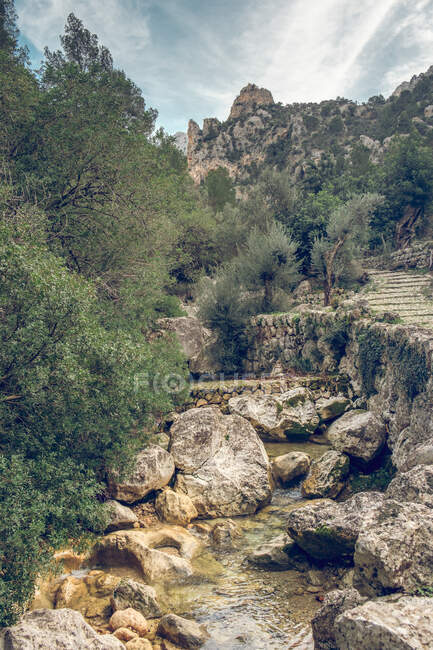 Breathtaking view of small creek with fresh water and magnificent countryside on sunny day in Soller, Spain — Stock Photo
