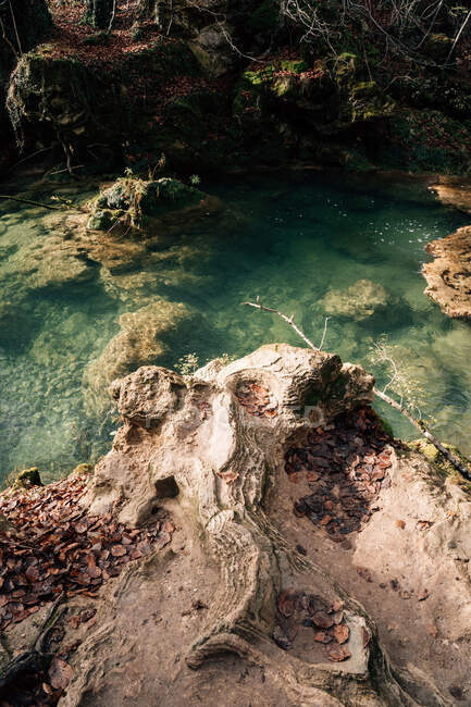 From above shot of dry autumn leaves lying on rough stony coast near fresh transparent water of pond in Navarre, Spain — Stock Photo