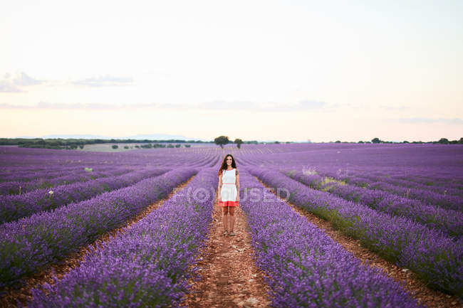 Young woman walking between rows of violet lavender field — стокове фото