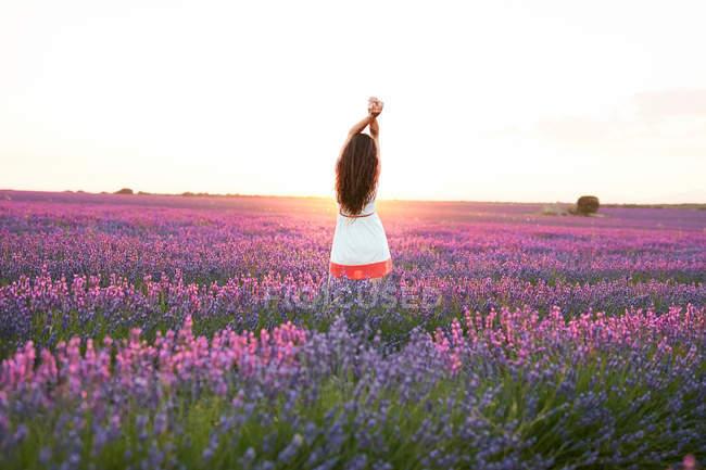 Vista trasera de la mujer joven entre violeta lavanda campo - foto de stock