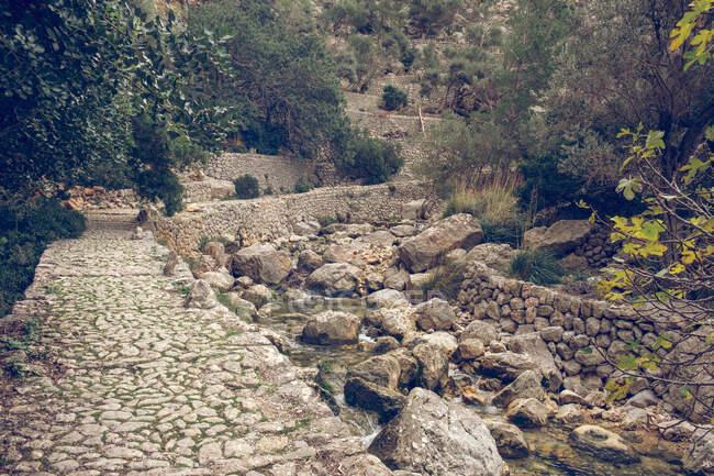 Impresionante vista de un pequeño arroyo con agua dulce y magníficos paisajes en un día soleado en Sóller, España - foto de stock