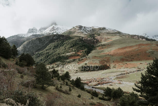 Picturesque view of valley with coniferous woods and wonderful mountains in snow in Pyrenees — Stock Photo