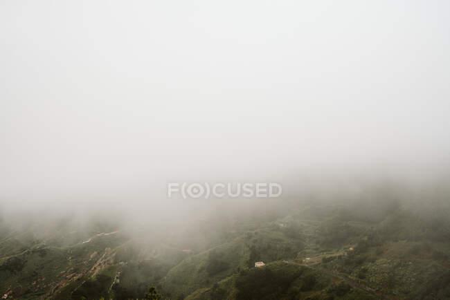 Туман над красивой холмистой местностью — стоковое фото