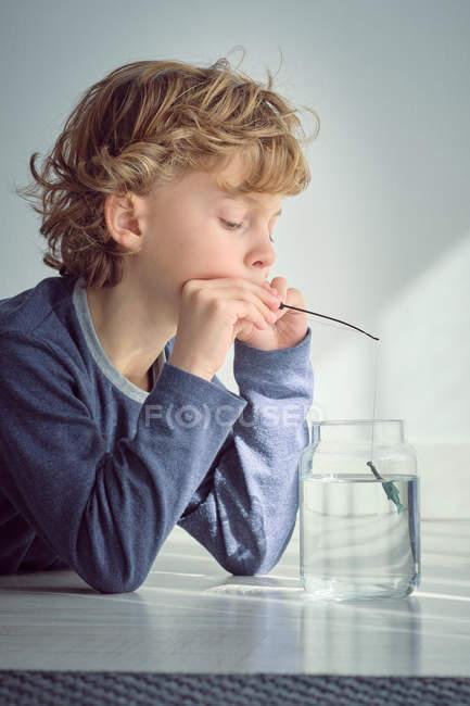 Хлопчик занурення невеликий стрижня в Ваза з чиста вода — стокове фото