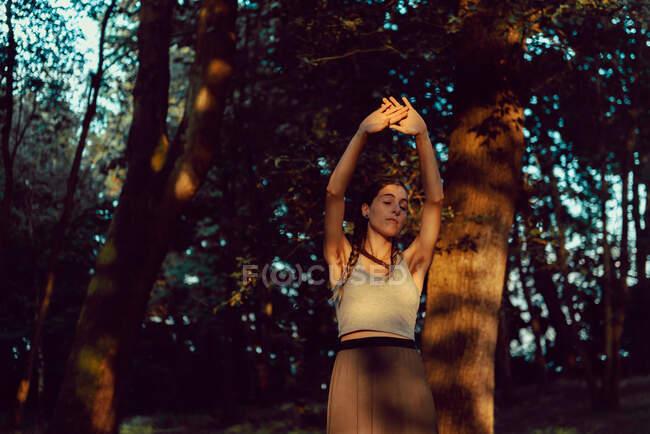 Mujer joven en un bosque majestuoso - foto de stock