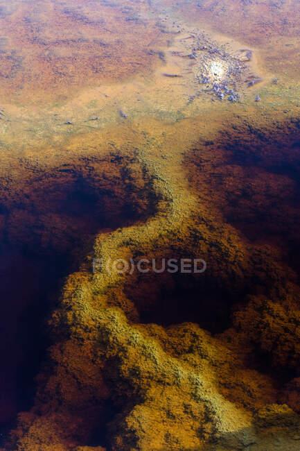 Superficie verde del río mineral - foto de stock