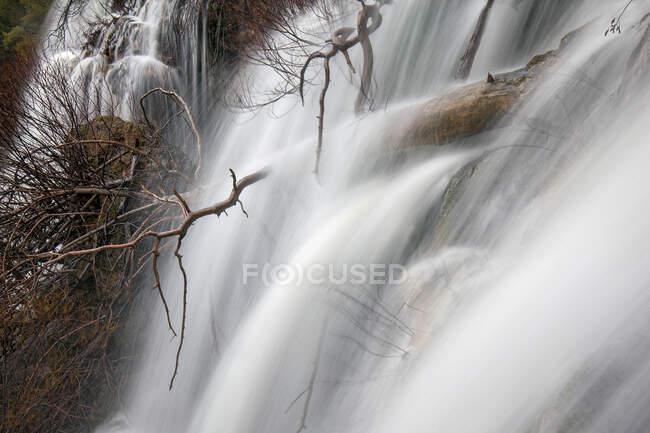 Maravillosa cascada cerca del árbol - foto de stock