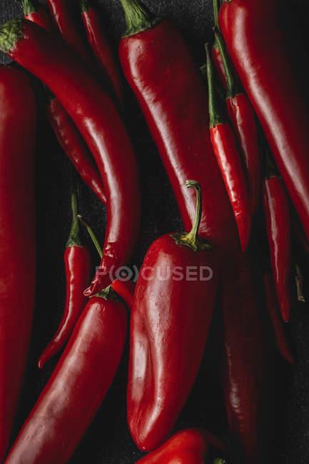 Frische rote würzige Chilischoten im Haufen auf schwarzem Hintergrund — Stockfoto