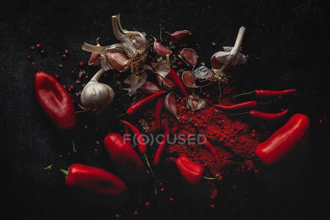 Poivrons rouges frais de piment, gousses d'ail et épices sur le fond noir — Photo de stock