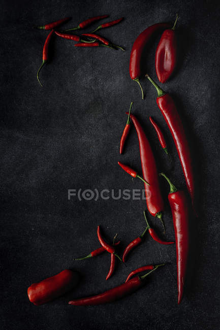 Fresh red spicy chilli peppers scattered on black background — Stock Photo