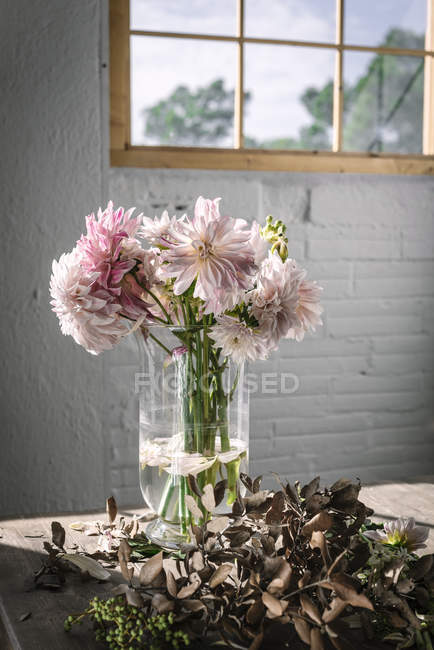 Wooden table with bouquet of pink chrysanthemums in vase between fallen petals and white wall with window — Fotografia de Stock