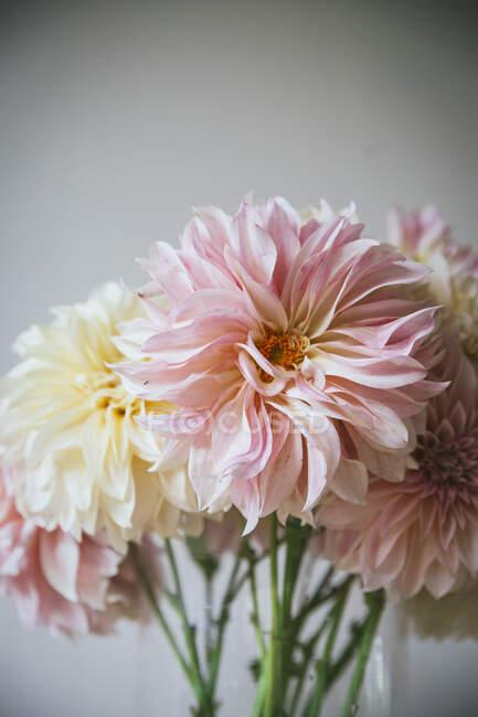 Деревянный стол с кухонными принадлежностями и букетами свежих цветов в вазах с водой возле белой стены — стоковое фото