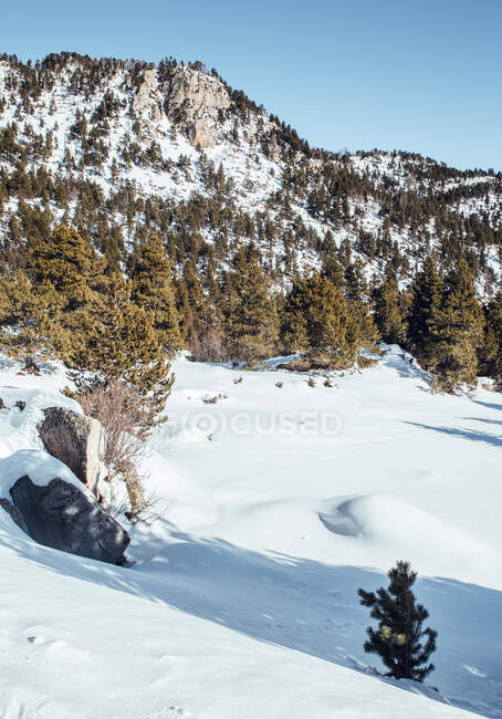 Panorama of high hills with green woods in winter in Cerdanya, France — Stock Photo