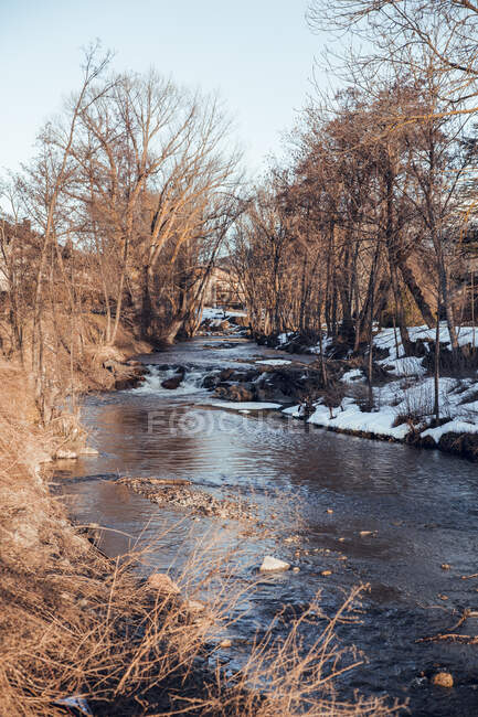 Narrow river running between dry trees and snow in Cerdanya, France — Stock Photo