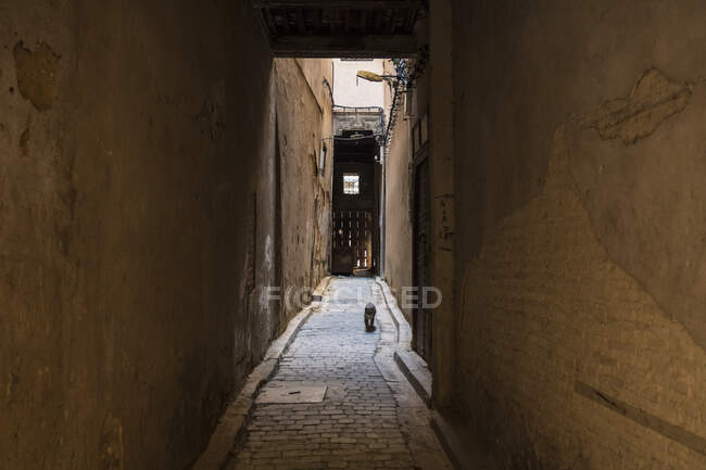 Amazing view of poor street between ancient houses in Marrakesh, Morocco — Stock Photo