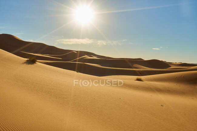 Desert with sand hills and blue heaven with sunshine in Marrakesh, Morocco — Stock Photo