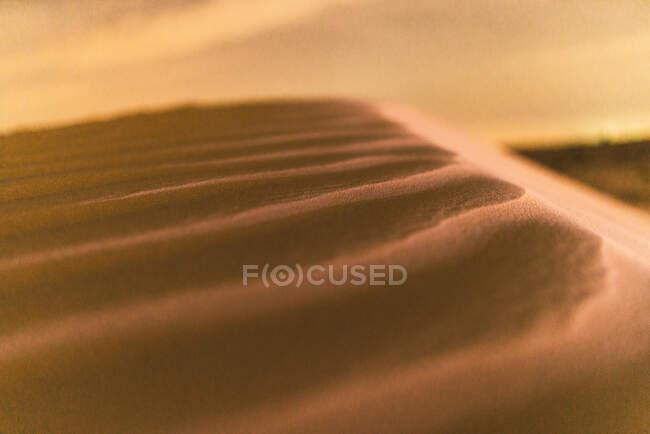 Petites dunes sur sable du désert — Photo de stock