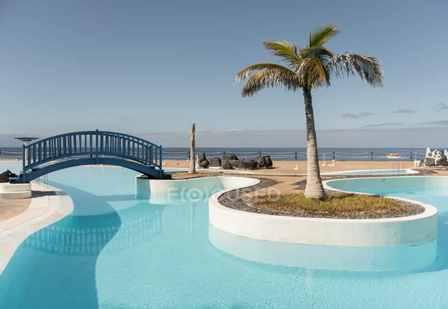 Piccolo ponte e palmo nella piscina blu dell'hotel — Foto stock