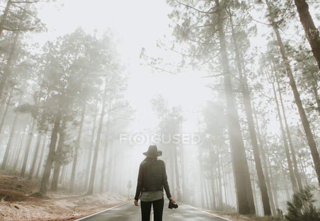 Back view of traveling photographer woman standing on road in foggy forest with photo camera — Stock Photo