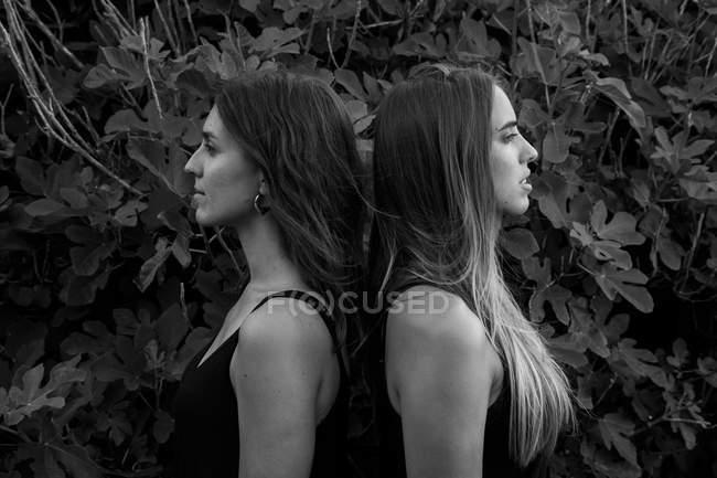Vue latérale de jeunes femmes séduisantes aux yeux fermés et aux mains levées se tenant près d'un arbuste vert — Photo de stock