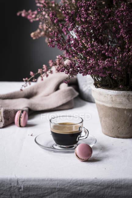Чашка еспресо з макаруни — стокове фото