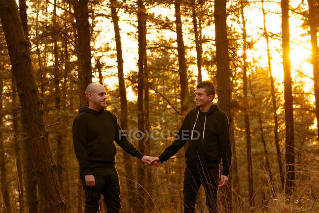 Homosexual couple holding hands and walking on way in forest at sunset — Stock Photo