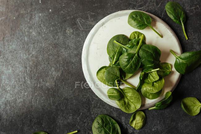 Свежие листья шпината на белой тарелке на серой поверхности — стоковое фото