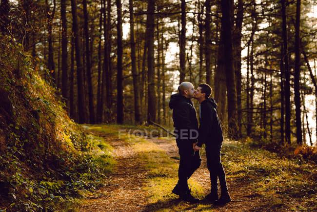 Гомосексуальная пара обнимая и целуя на маршруте в лесу в солнечный день — стоковое фото