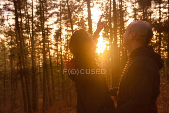 Homosexual couple standing in forest in bright sunlight — Stock Photo