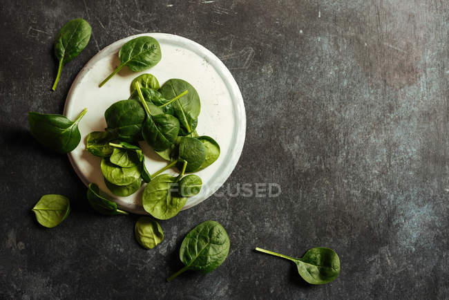 Fresh spinach leaves on white plate on grey surface — Stock Photo