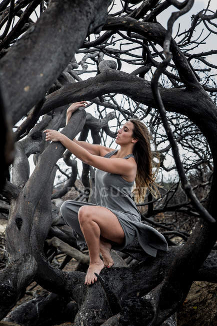 Young ballerina in grey wear posing on branches of dry tree — Stock Photo